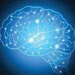 Beynimizin Yüzde Kaçını Kullanıyoruz?